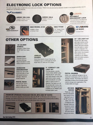 Electronic Lock and Other Options